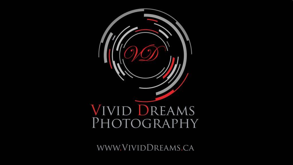 Professional photographers, Professional videographer